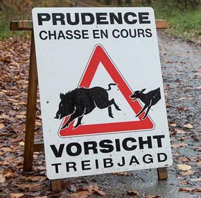 Prudence: battue – Vorsicht: Treibjagd